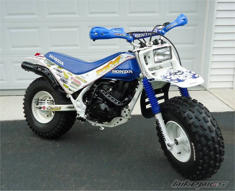 1986 Honda Tr200 Fatcat Vintage Honda Motorcycles Enduro Motorcycle Honda Bikes