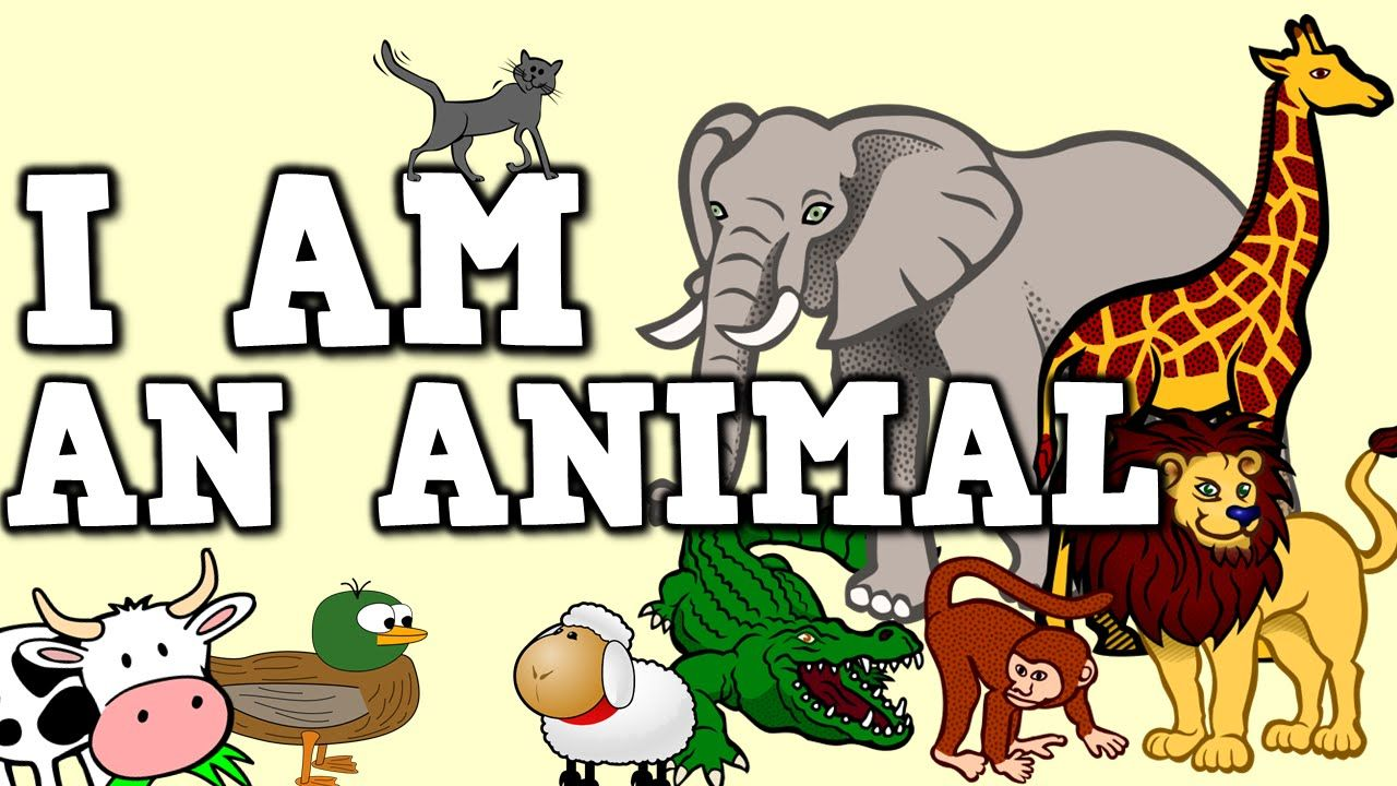 I AM AN ANIMAL! (song for kids about animal sounds/movements)