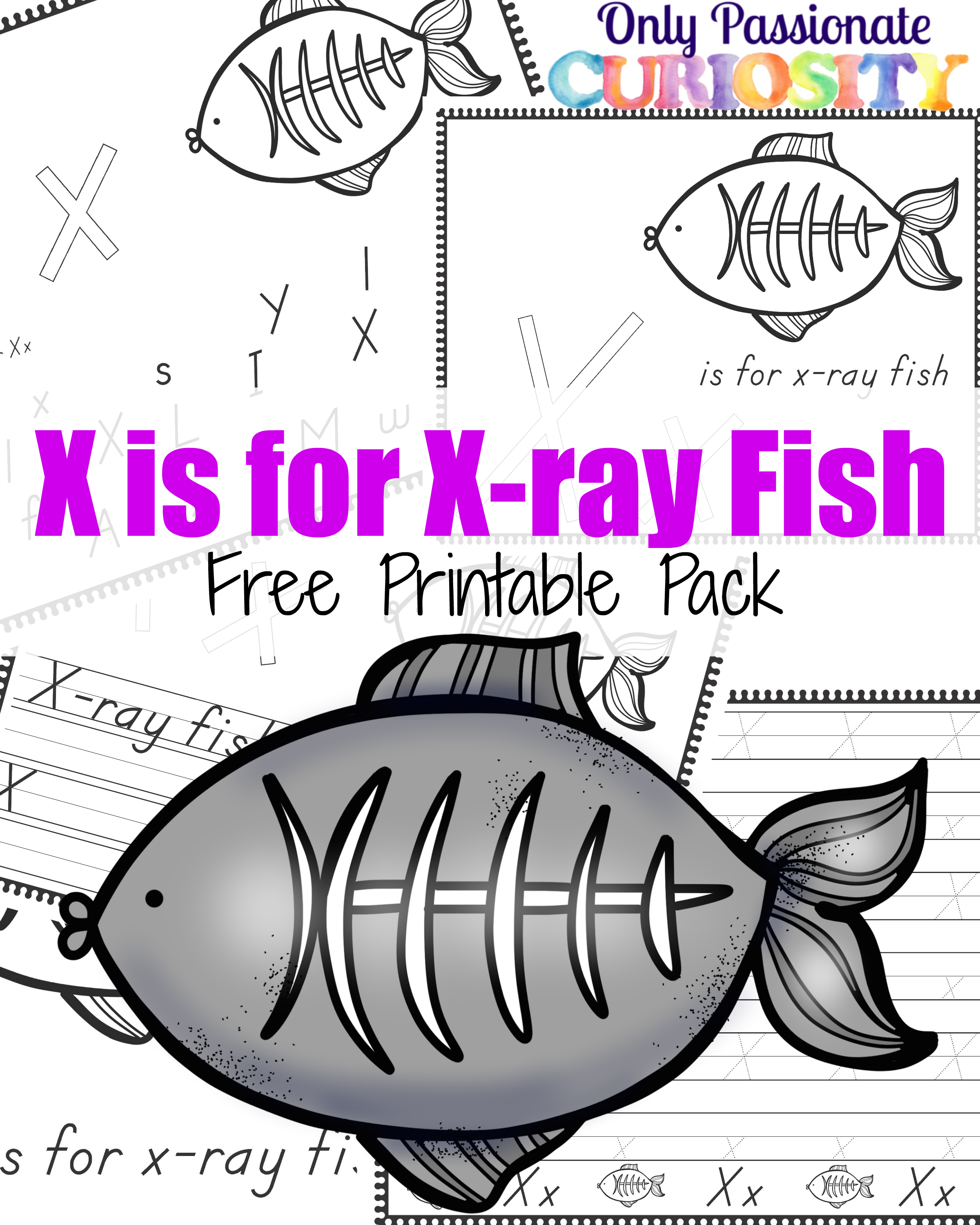 X Is For X Ray Fish