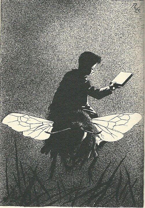 Erik Of Het Klein Insectenboek Godfried Bomans Illustratie