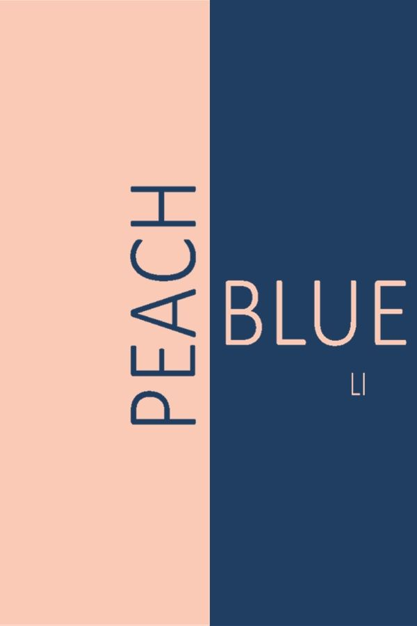 Peach Blue ღ Li Exterior Paint Colors For House Paint Colors For Home Navy Blue Bedrooms