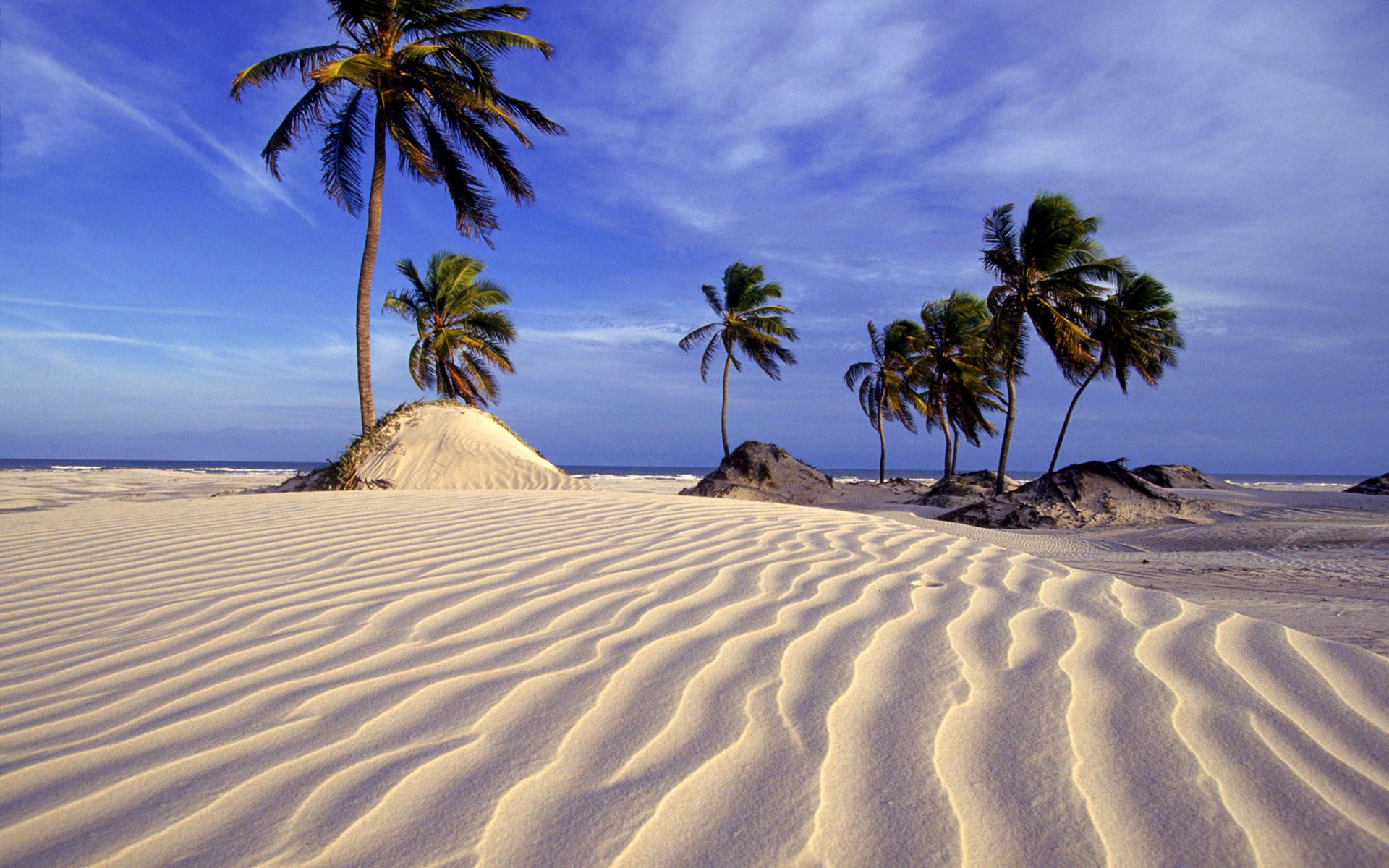 Pictures Of Beaches In Brazil Dunes At Salvador Bahia