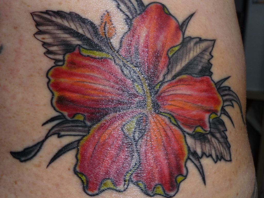 Hibiscus Flower Tattoo Tattoos Pinterest Hibiscus Flower