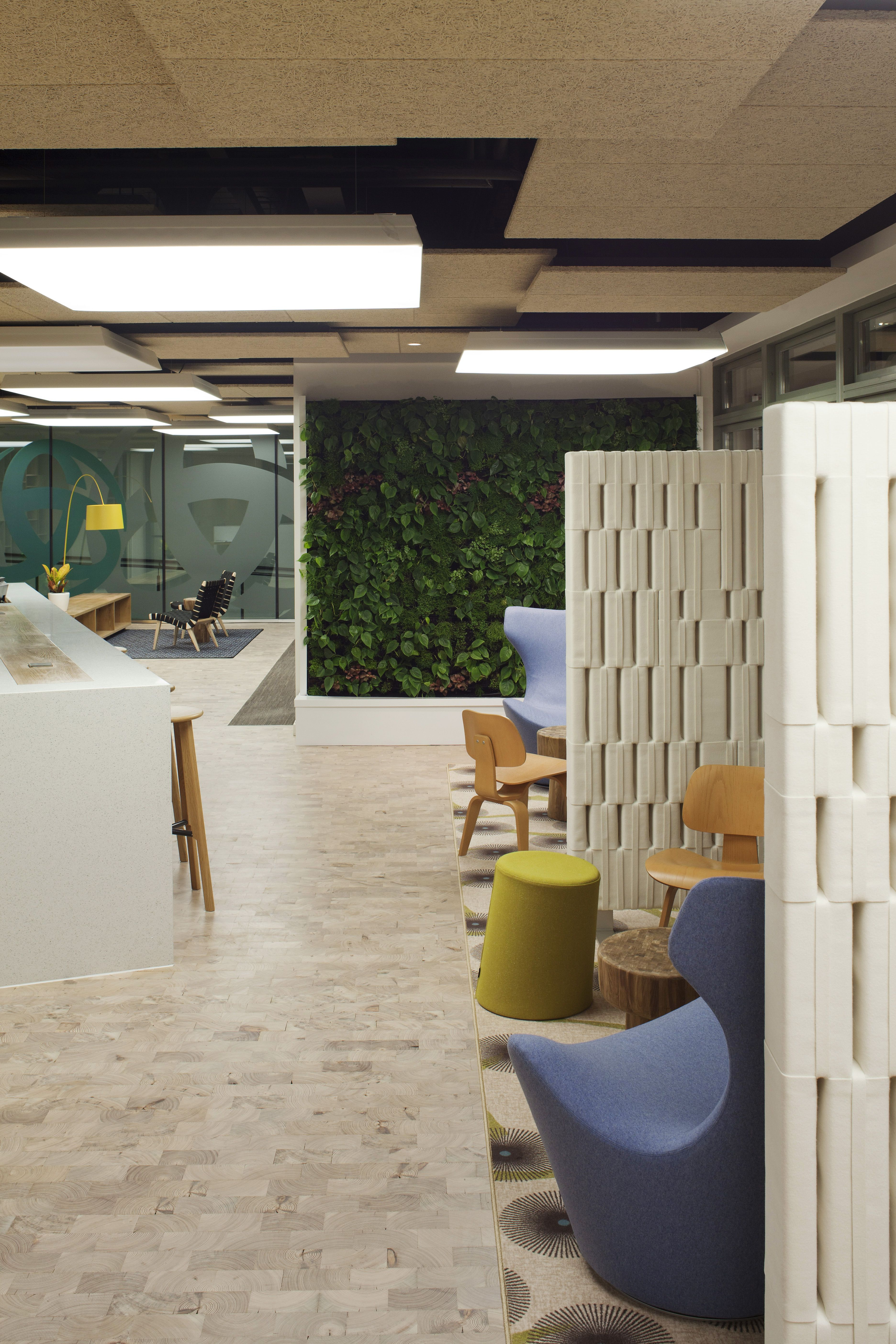 Green Living Wall At Triodos Bank S Sustainable Office Living Wall Office Relocation Green Living