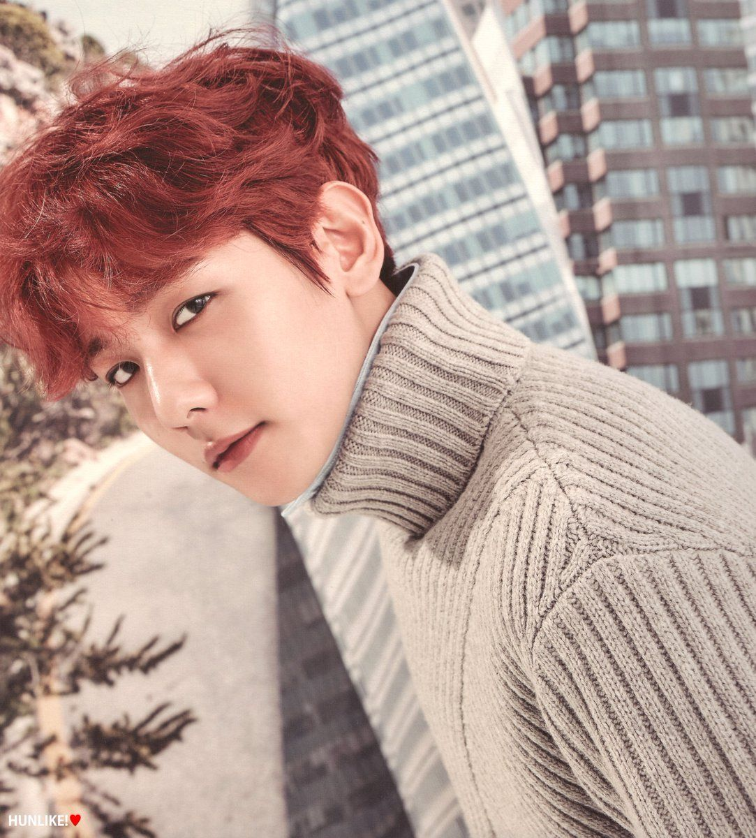 EXO (Baekhyun) 2017 Season Greetings