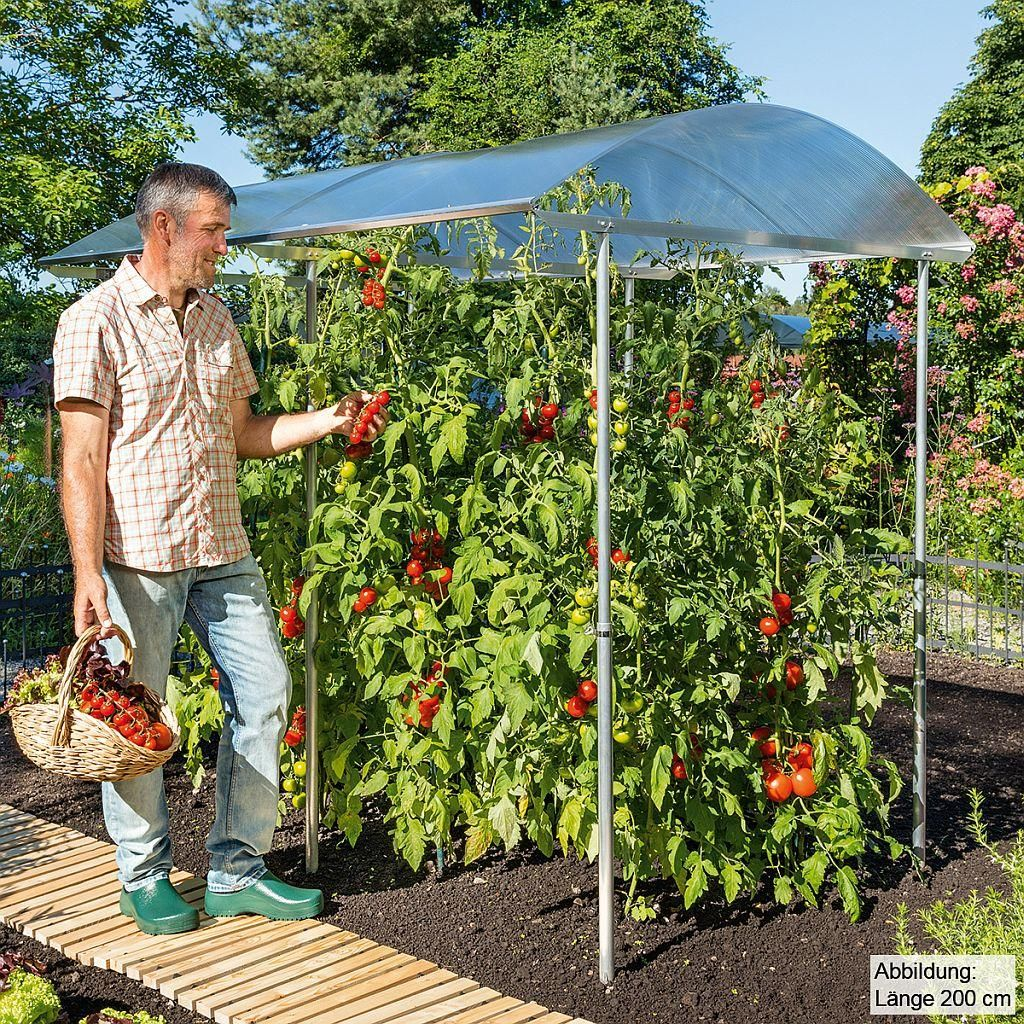 beckmann kg psn1 schutzdach f r pflanzen gr e 1 100 x 112 cm garten tomaten haus