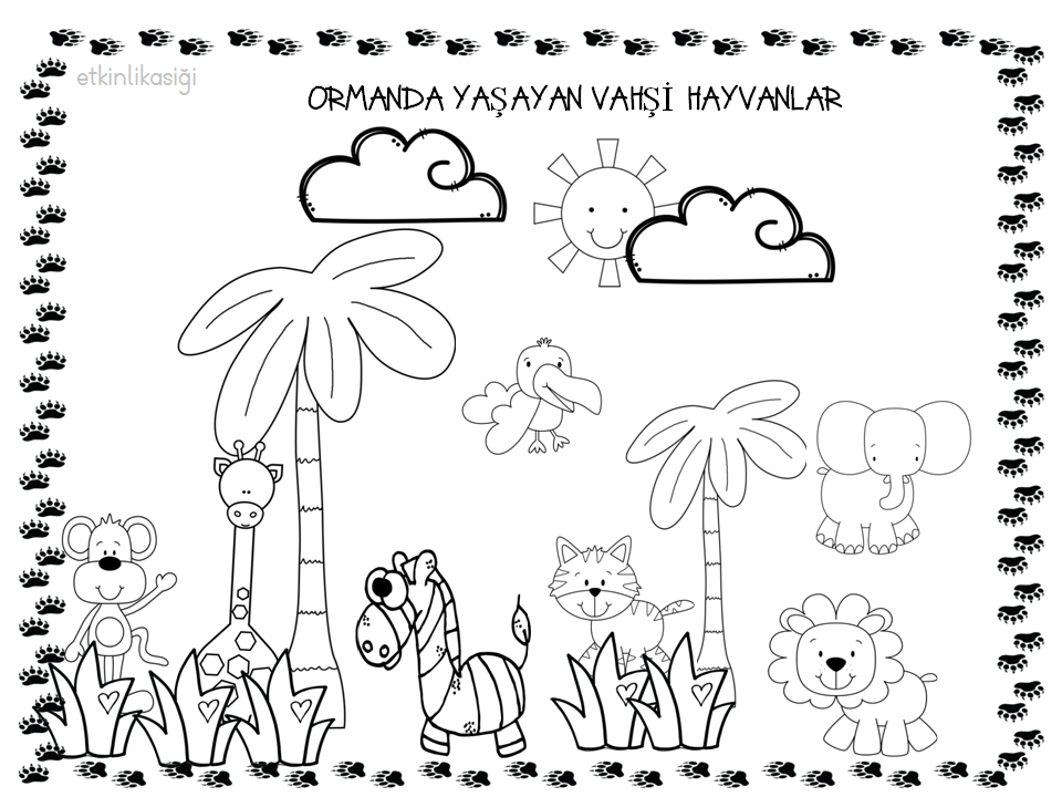 Vahşi Hayvanlar Boyama Etkinlikasigi Working Pages Preschool