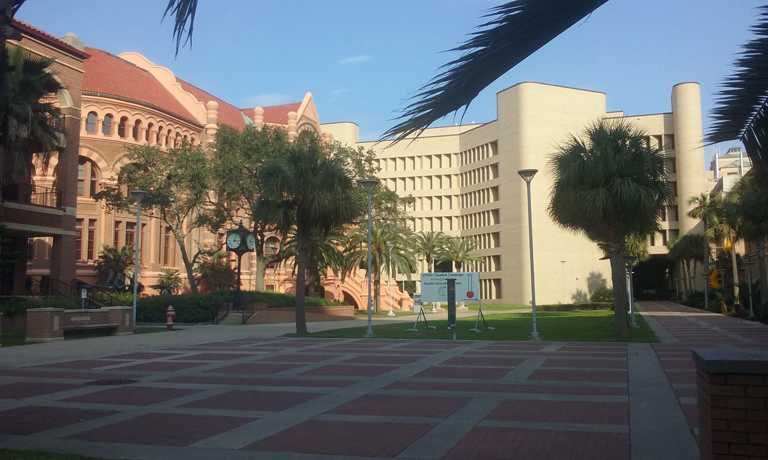 University of Texas Medical Branch, Galveston 2017 | Travel
