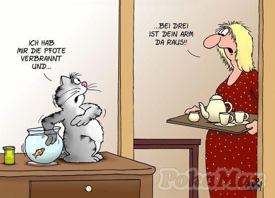 Husky Frases: Pfote Verbrannt... :D