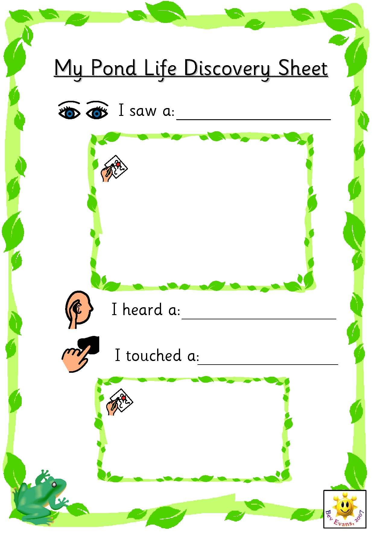 Simple Sheets For Pupils To Record On Linked To Pond
