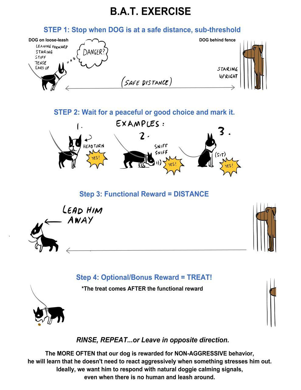 Https Www Google Com Search Tbm Isch Reactive Dog Aggressive