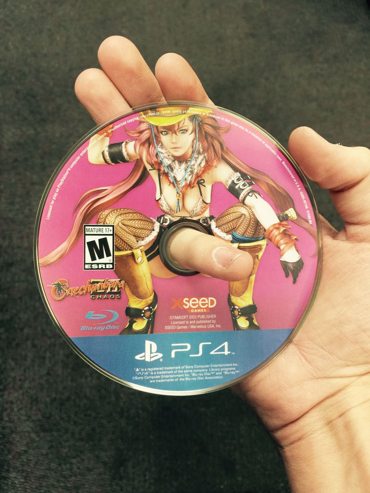Onechanbara Disc Art Wiring Diagrams Harleydavidsonwiringdiagramelectricgeneratorjpg 18 Best Images On Pinterest Videogames Gaming And Ps3 Rh Com Screen