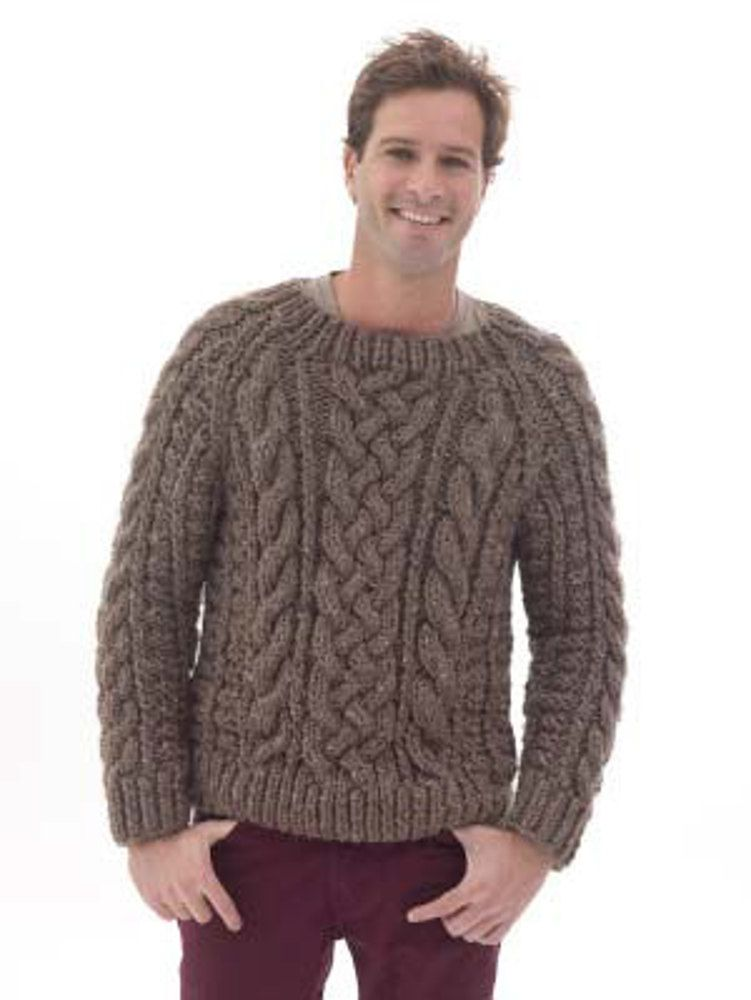 3d213edfb90e Raglan Cabled Pullover in Lion Brand Wool-Ease Thick   Quick ...