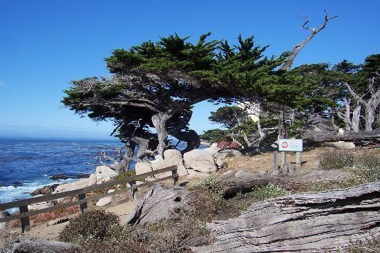 Pin On Monterey Ca