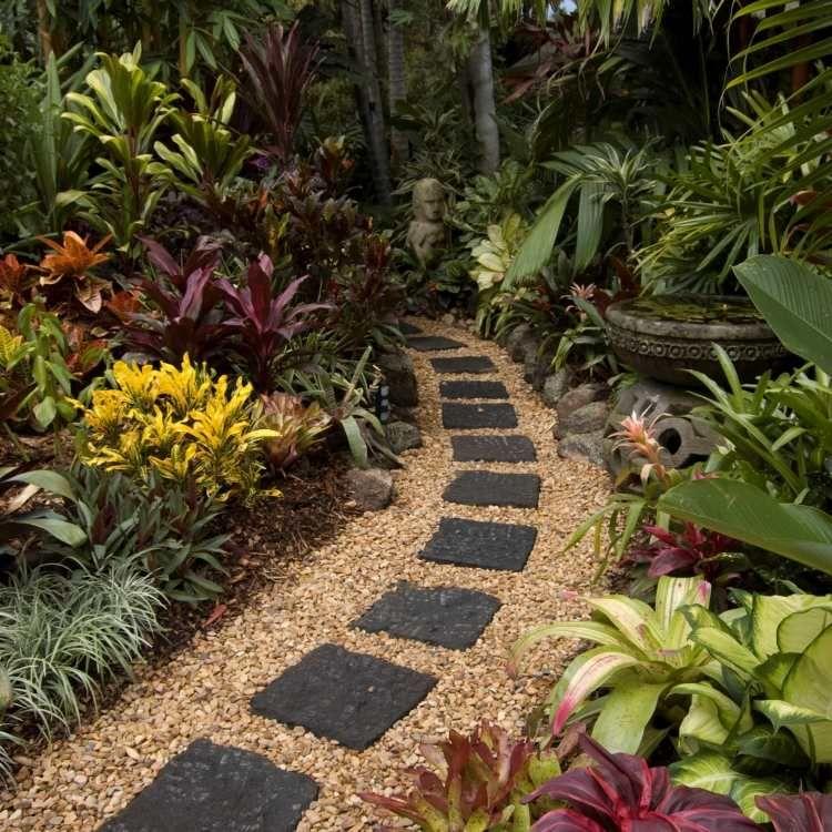 Steinweg Im Tropischen Garten Mit Exotischen Pflanzen