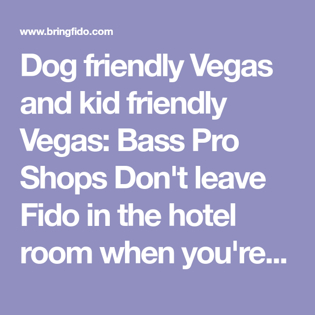 Dog Friendly Vegas And Kid Friendly Vegas Bass Pro Shops Don T Leave Fido In The Hotel Room When You Re On Vacation Get Out A Dog Friends Dog Beach Las Vegas
