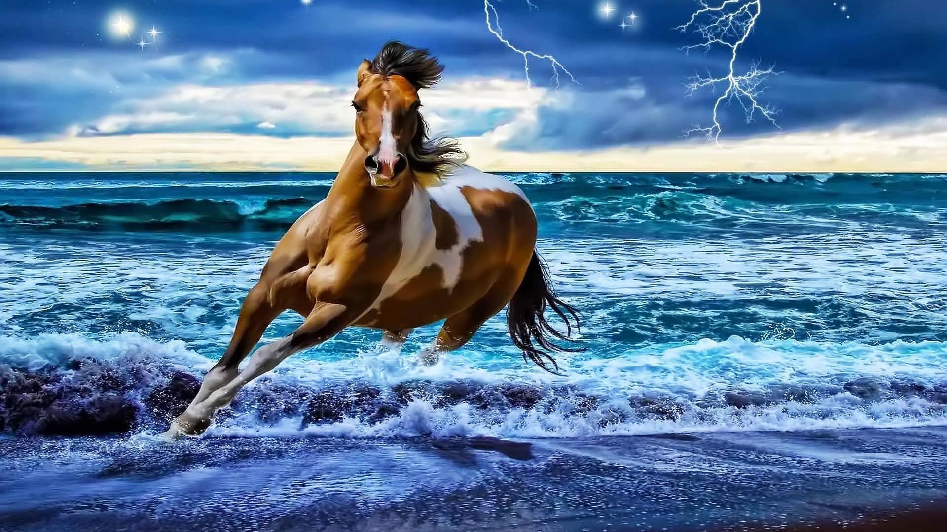 Most Inspiring Wallpaper Horse Fantasy - 85215c7a373adb9171e54b9fcd1558eb  Collection_715079.jpg