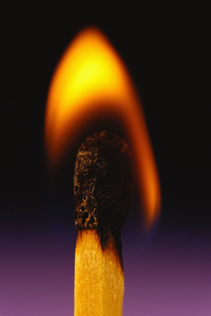 A Little Spark Kindles a Great Fire