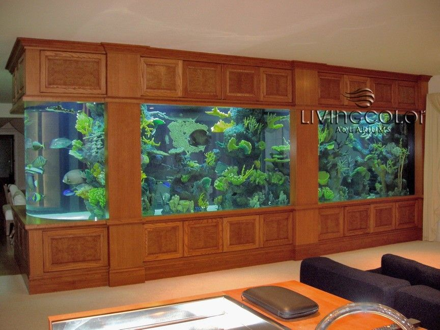Image Detail For  Custom Aquariums, Acrylic Tank Manufacturing, Aquarium  Design, Custom .