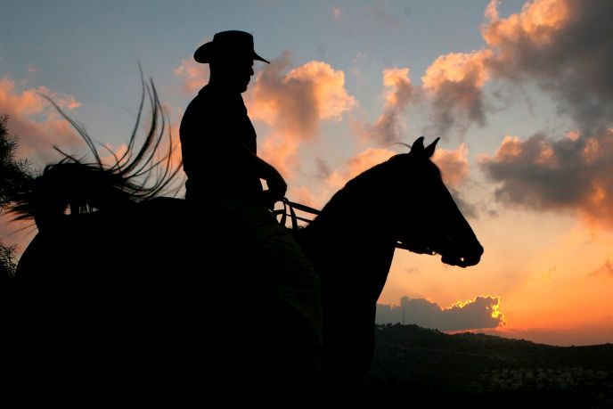 When you think Israel you might think creativity or innovation, but... Cowboys? Not so much, but Israel has it all! Take a look at these genuine Israeli cowboys who can herd cattle with the best of them  #cowboy #israel