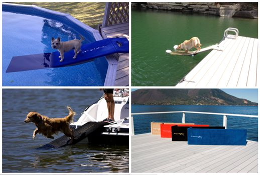 Doggydocks For All Sizes And Breeds On All Types Of Boats