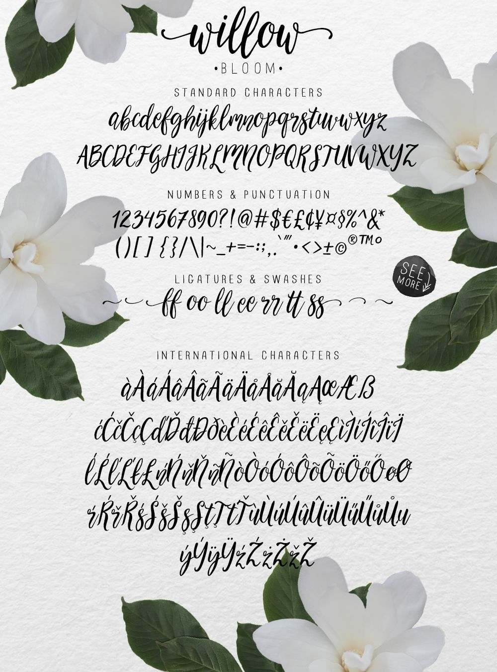 Calligraphy font willow bloom by skyladesign on