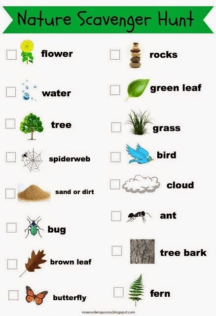 photo relating to Nature Scavenger Hunt List Printable called Celebrating World Working day (and Plenty of TPT freebies