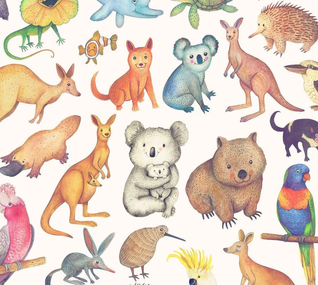 Tbt Australian Animals And A Kiwi Bird Hand Painted For The Aussie Mates Greeting Cards For Kangaroo Illustration Cute Australian Animals Australia Animals