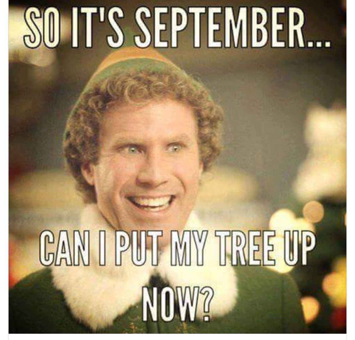 So it's September, can I put my tree up now meme with Will Farrell from Elf.