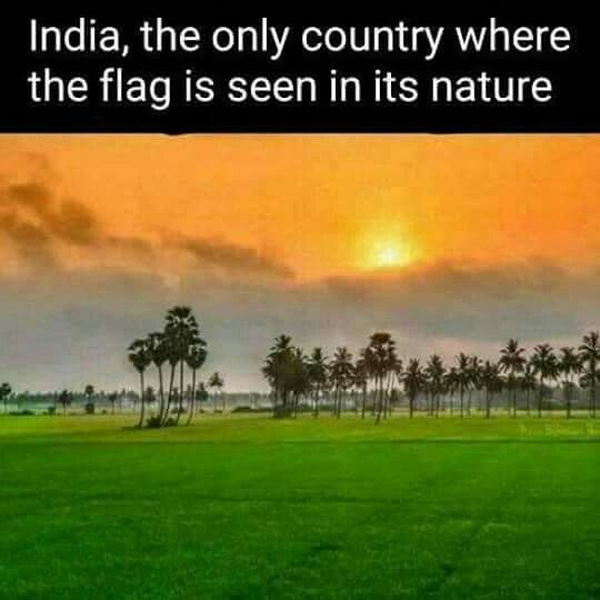 Pin By Veena On Pictorial India Facts India Quotes Independence Day Quotes