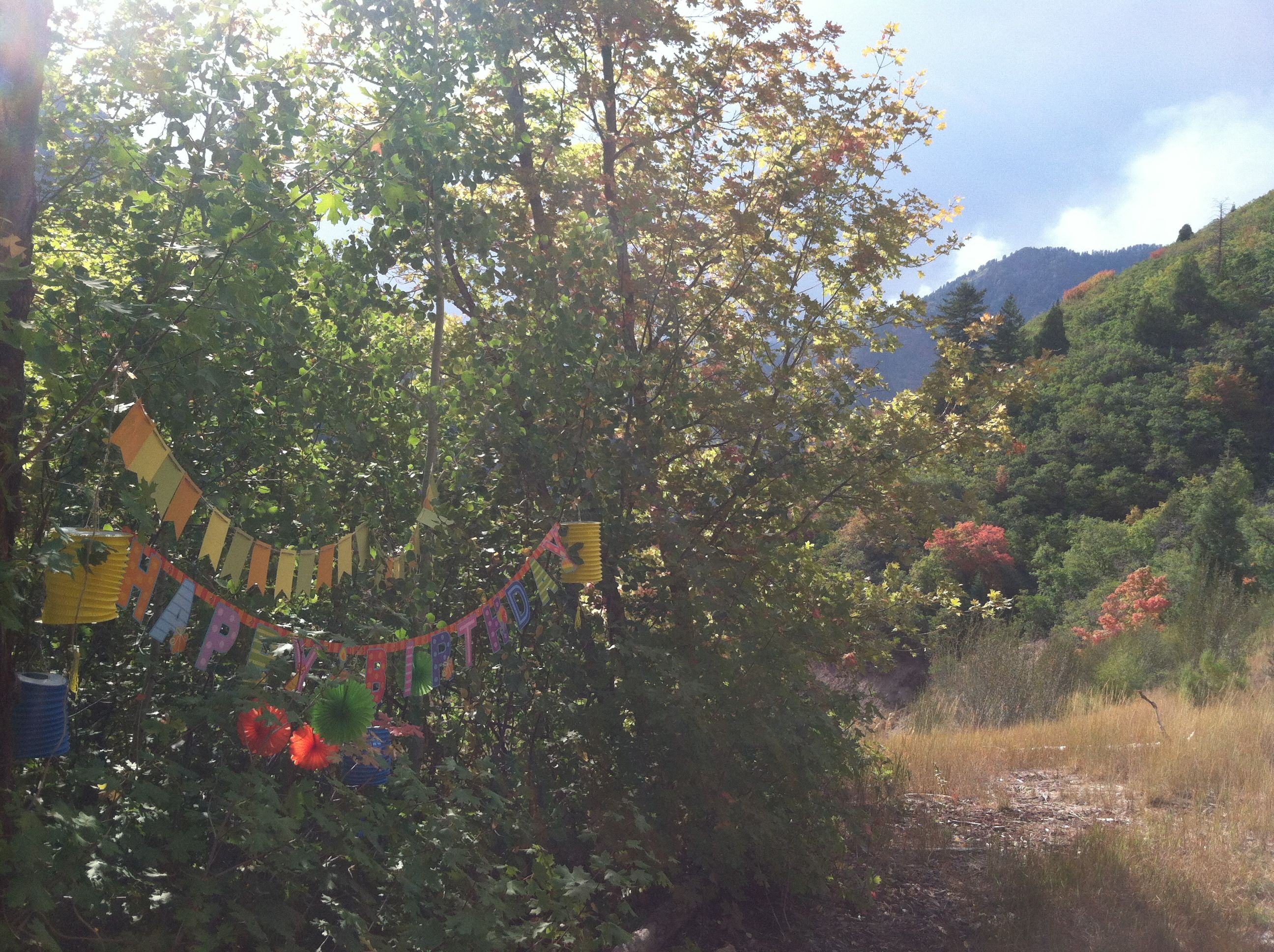 Fall banner in the mountains.