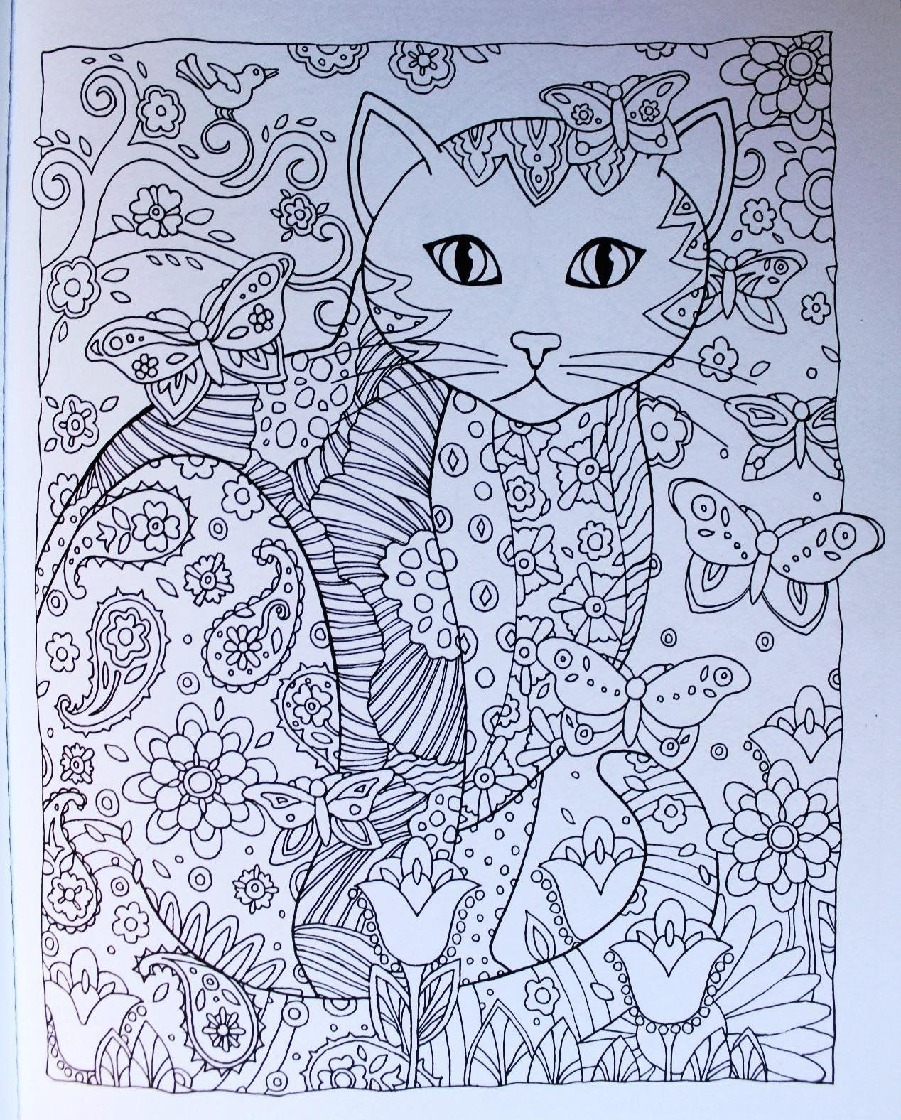 Cat Coloring Book Amazon Designs Trend