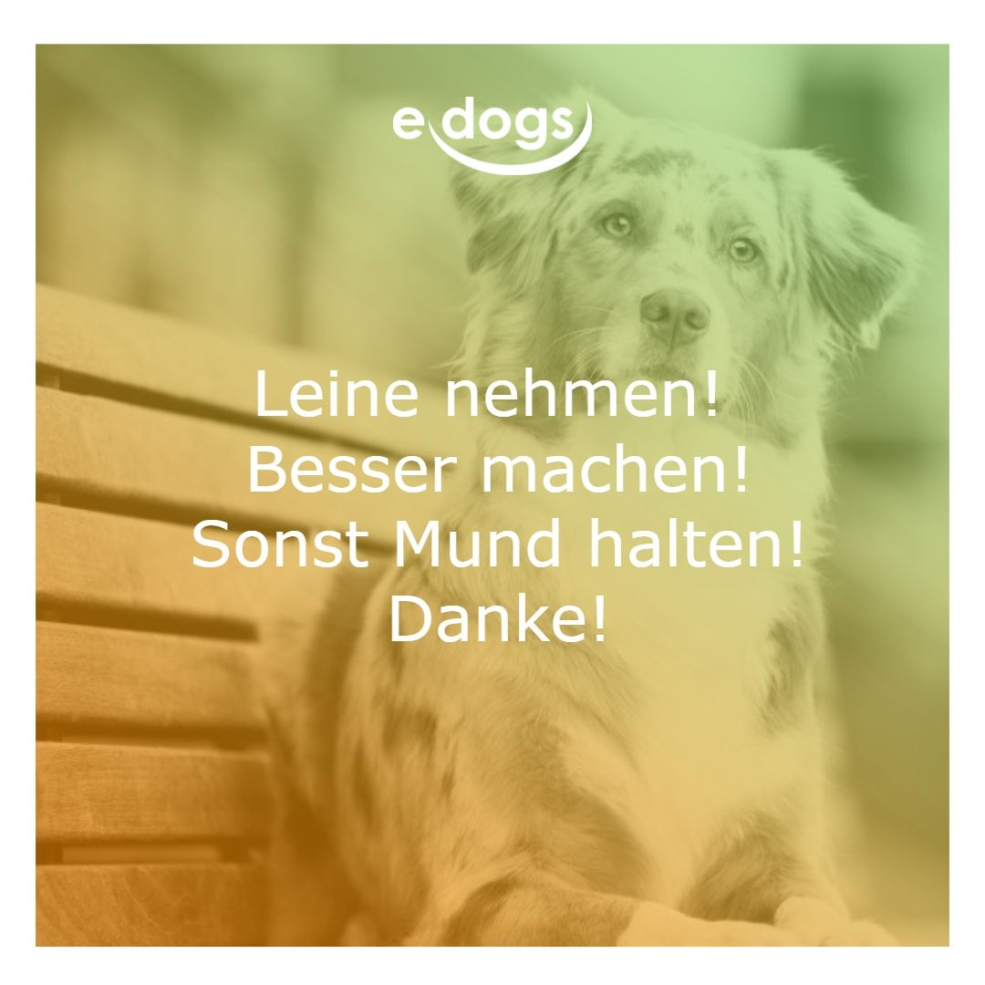 Hunde Spruche Edogs Hundeliebe Hundespruche Hund Zitat Hunde