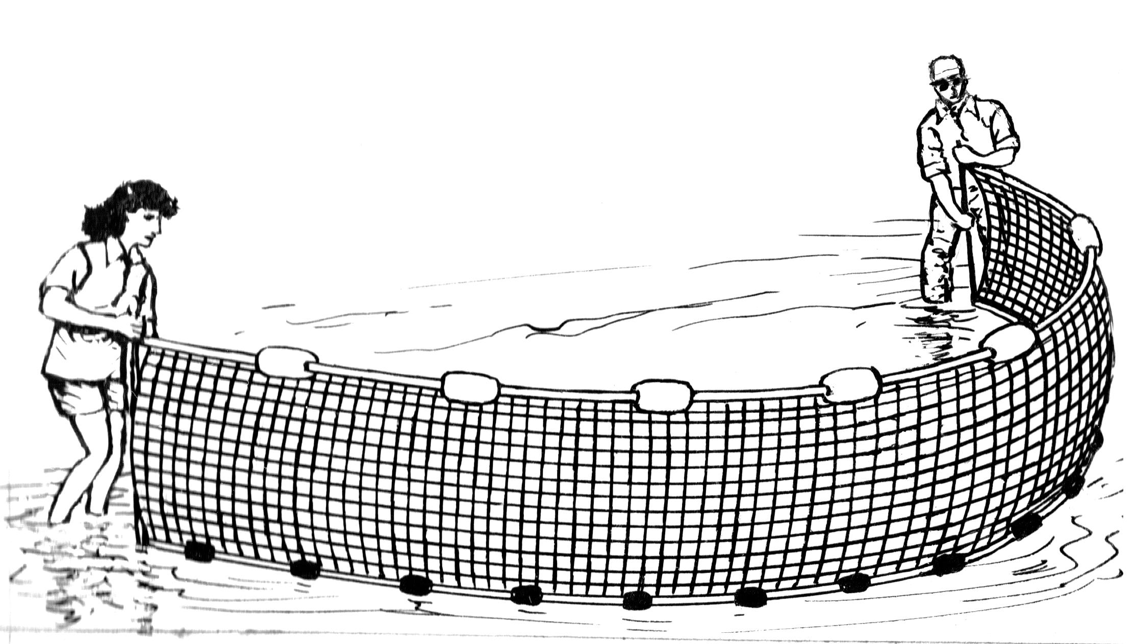 Rede De Pesca Flutuante Peixe Redes De Pesca Cabo Imagem Png E Psd Para Download Gratuito Free Clip Art Cartoon Clip Art Fish Clipart