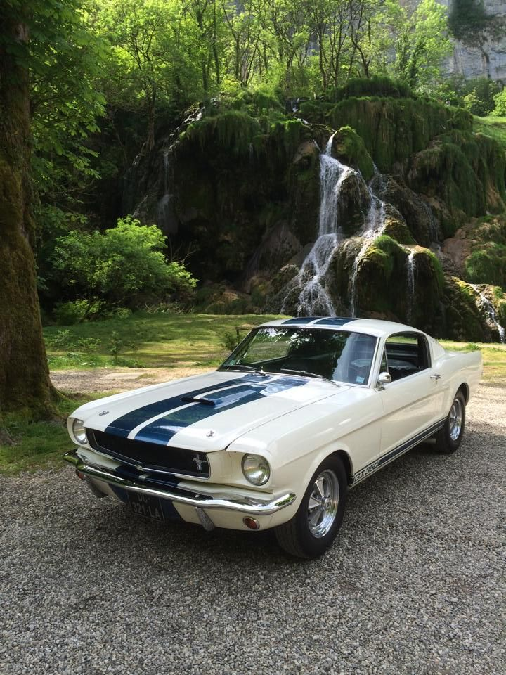 65 Shelby GT350.