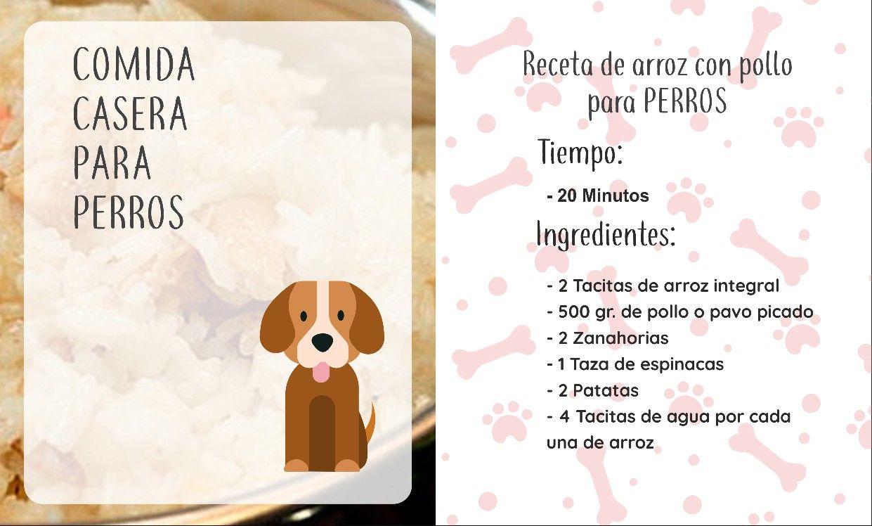 Receta de arroz con pollo para perros