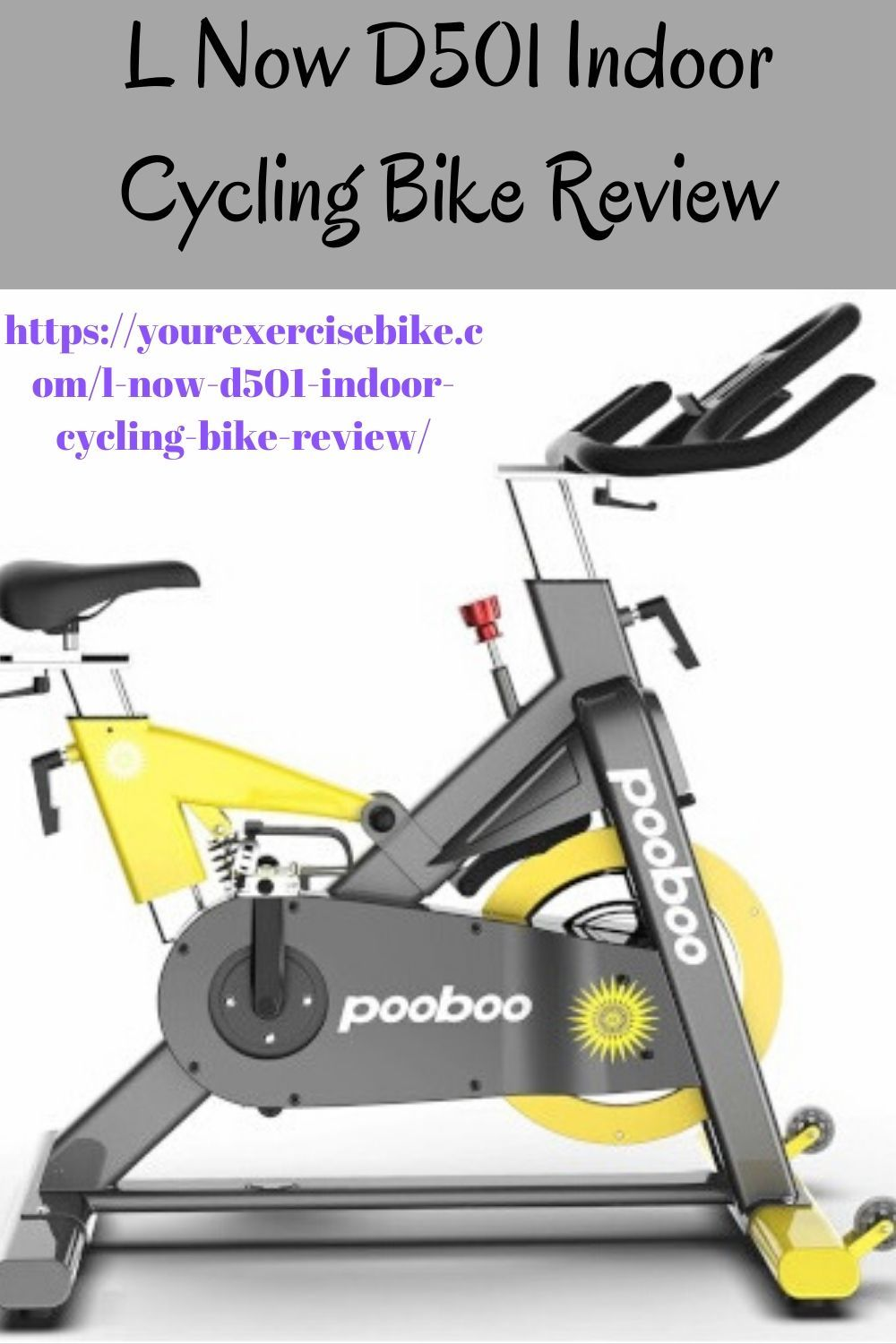 L Now D501 Indoor Cycling Bike Review In 2020