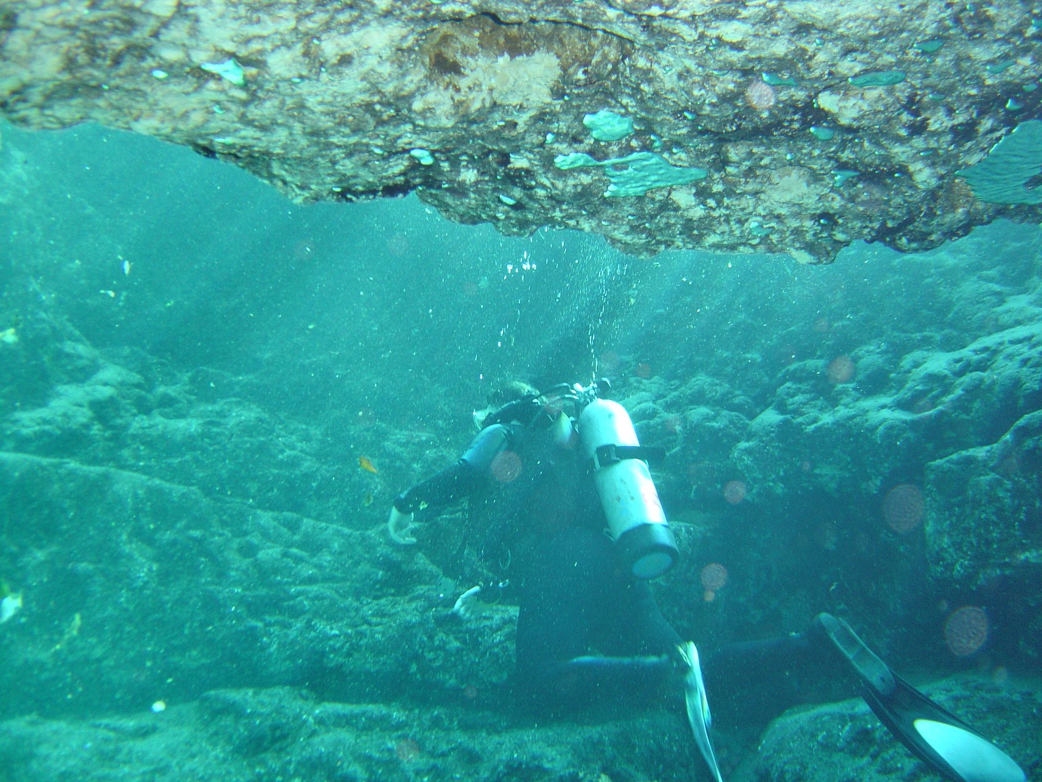 Florida Cave Diving 101