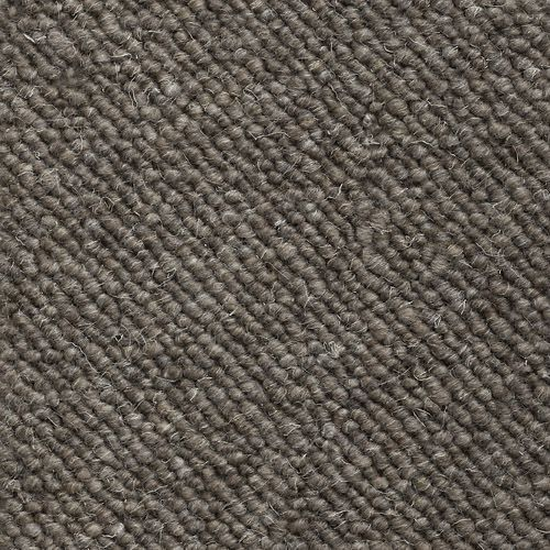 Greige Carpet Color But In A Plush Carpet Basement Ideas