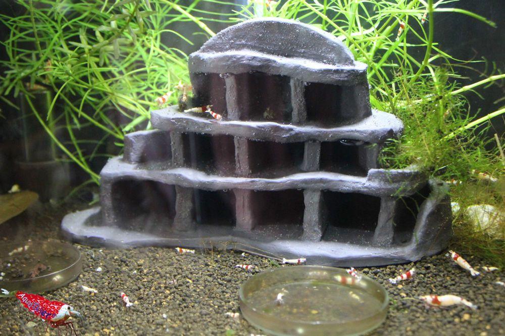 Garnelenhotel II - Midi - Höhle Versteck Haus Aquarium Deko - deko fur aquarium selber machen