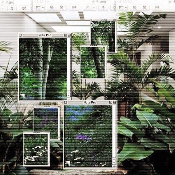 #PoolsideFM #Vaporwave #Aesthetic #Tropical #overgrownaesthetic
