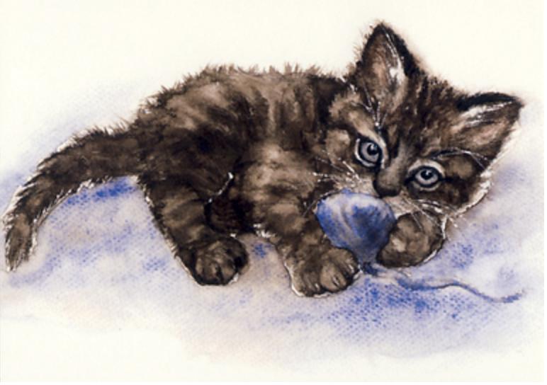 Kissanpentu ja sininen lanka | Perromania - Postikortit netistä