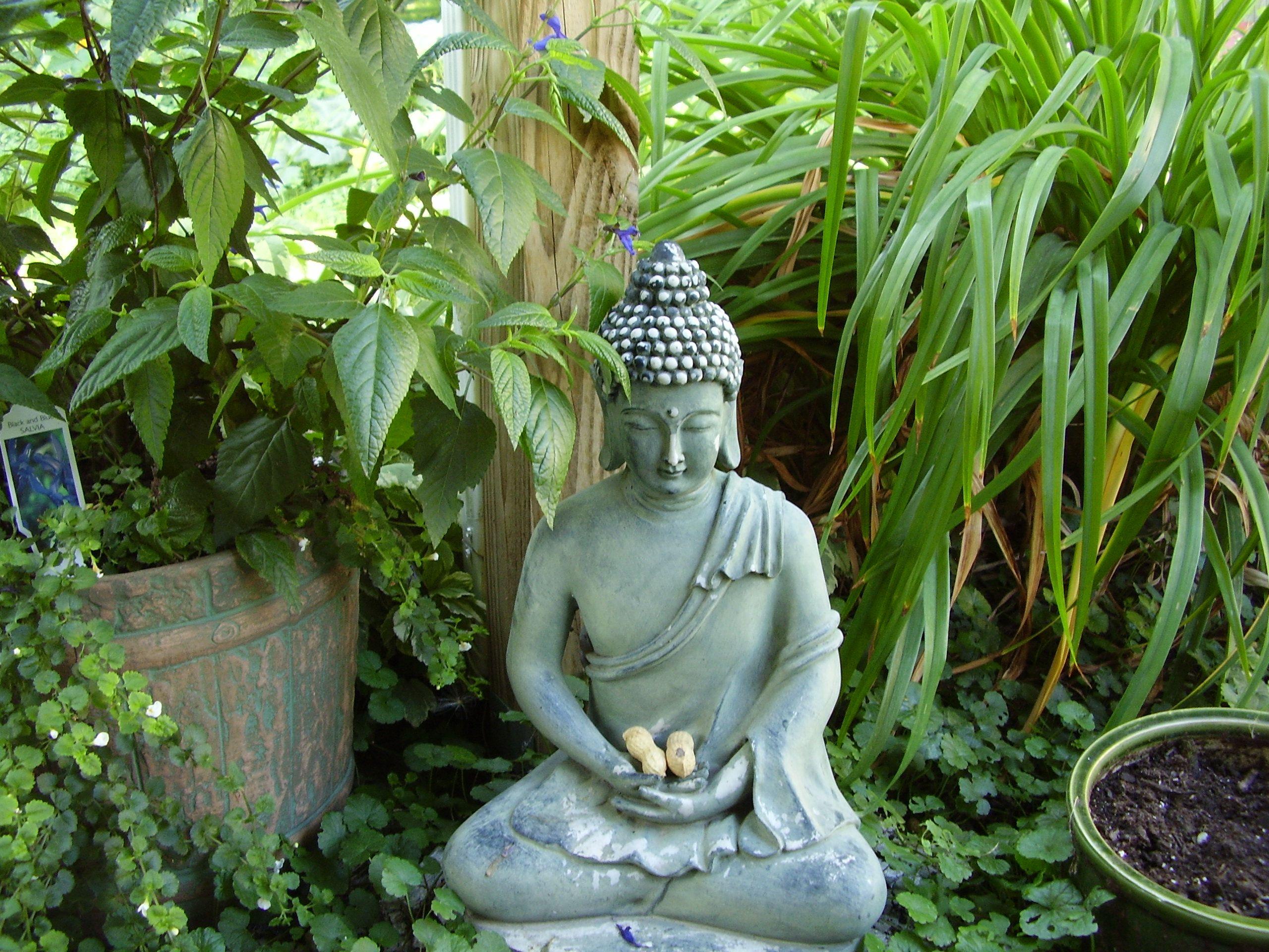 buddha on the patio inspiring spirituality pinterest buddha buddhism and happiness. Black Bedroom Furniture Sets. Home Design Ideas