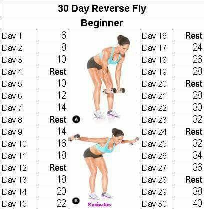 Reverse fly