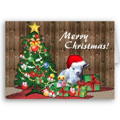Merry Christmas Baby Goat  Adorable Baby Goat Christmas Card - this is Hercules, my little pygmy goat baby who was born tiny and fit in a cup.