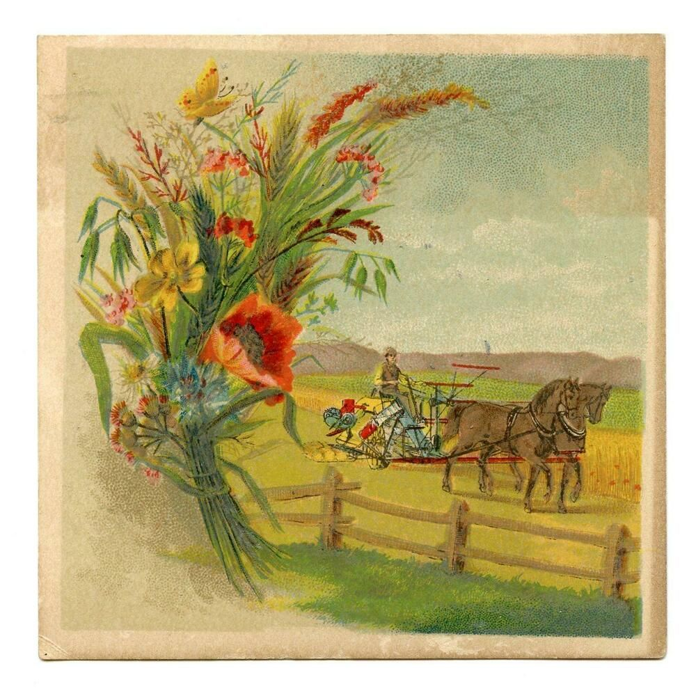 Pin On Victorian Trade Cards