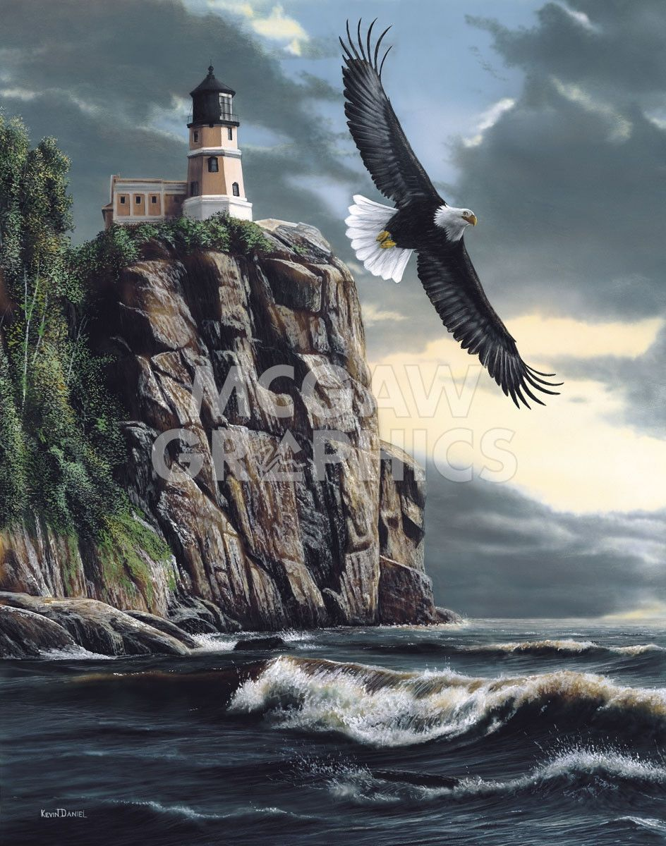 Lighthouse Cliff | Eye of an Eagle in 2019 | Lighthouse