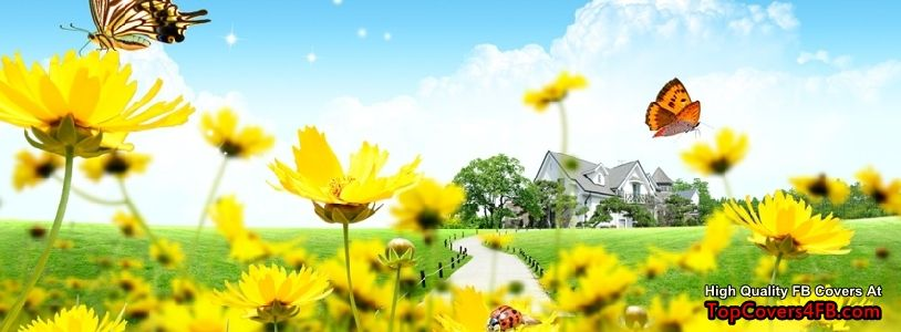 Yellow Flowers In The Garden Cover Photo For Facebook Profile Page Landscape Wallpaper Nature Wallpaper Name Wallpaper