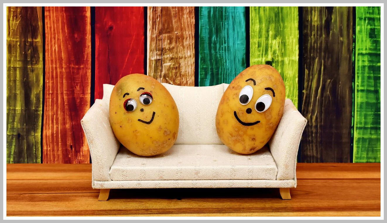 Idioms Couch Potato Kaplan International Colleges Blog