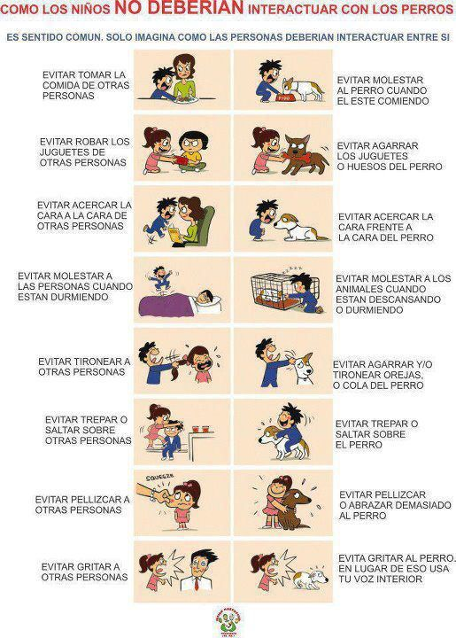 Entradas Sobre Animales En Infografías En Castellano Dog Care Therapy Dogs Pets